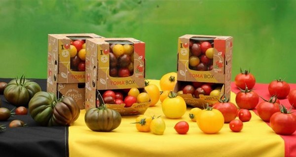 Toma'Box-with-tomatoes-in-three-colors
